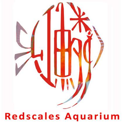 紅鱗魚マークbのコピー.jpg