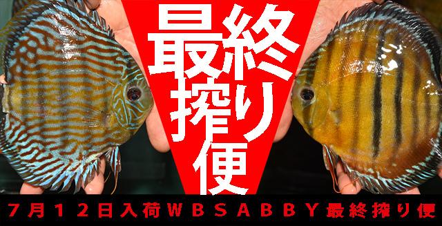 2018年7月12日WBSABBY最終搾り便640.jpg